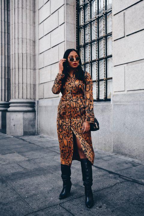 Snake Print Dress: Zara